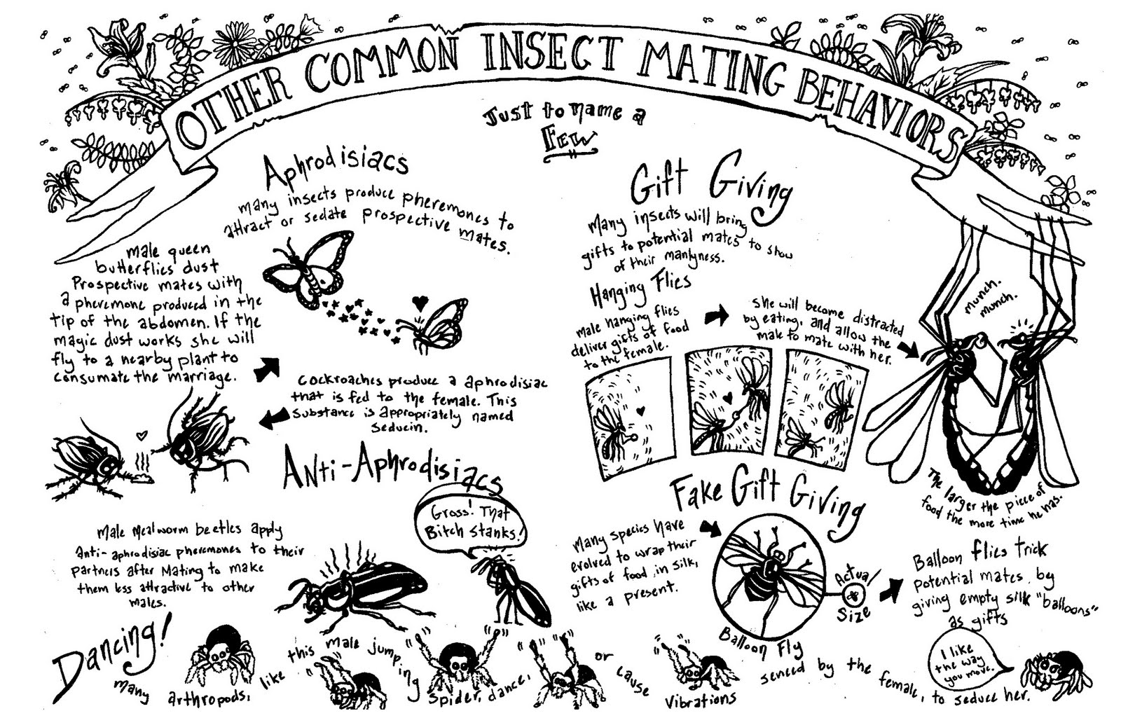 The Insect World: Animal Sex Issue #2, Bugs and Slugs