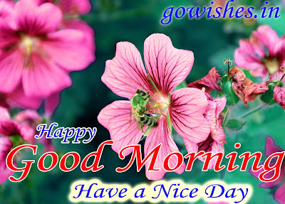 Good Morning wishes Image wallpaper Today 08-12-2018