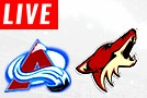 Coyotes LIVE STREAM streaming