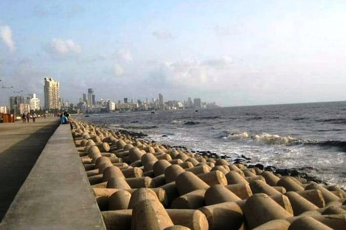 What Are Tetrapods Lying Along the Waterfront At Marine Drive?