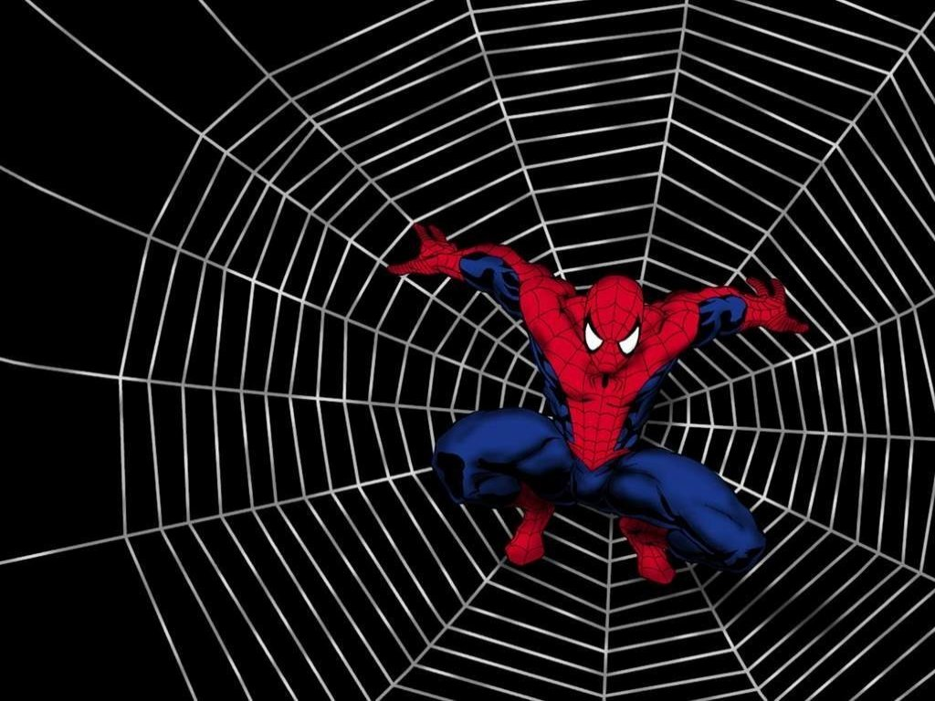 http://1.bp.blogspot.com/-GanM48qGrw8/Tu7wby6pwuI/AAAAAAAAAcw/DSgXNpRO-lA/s1600/1136139361_800x600_spider-man-movie-wallpaper.jpg