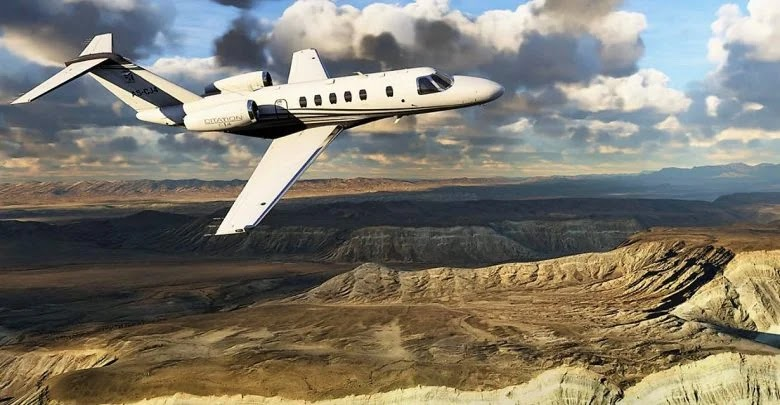 How to see animals while flying in Microsoft Flight Simulator