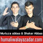 https://aliwalayazadar.blogspot.com/2020/08/murtuza-abbas-shakar-abbas-nohay-2021.html