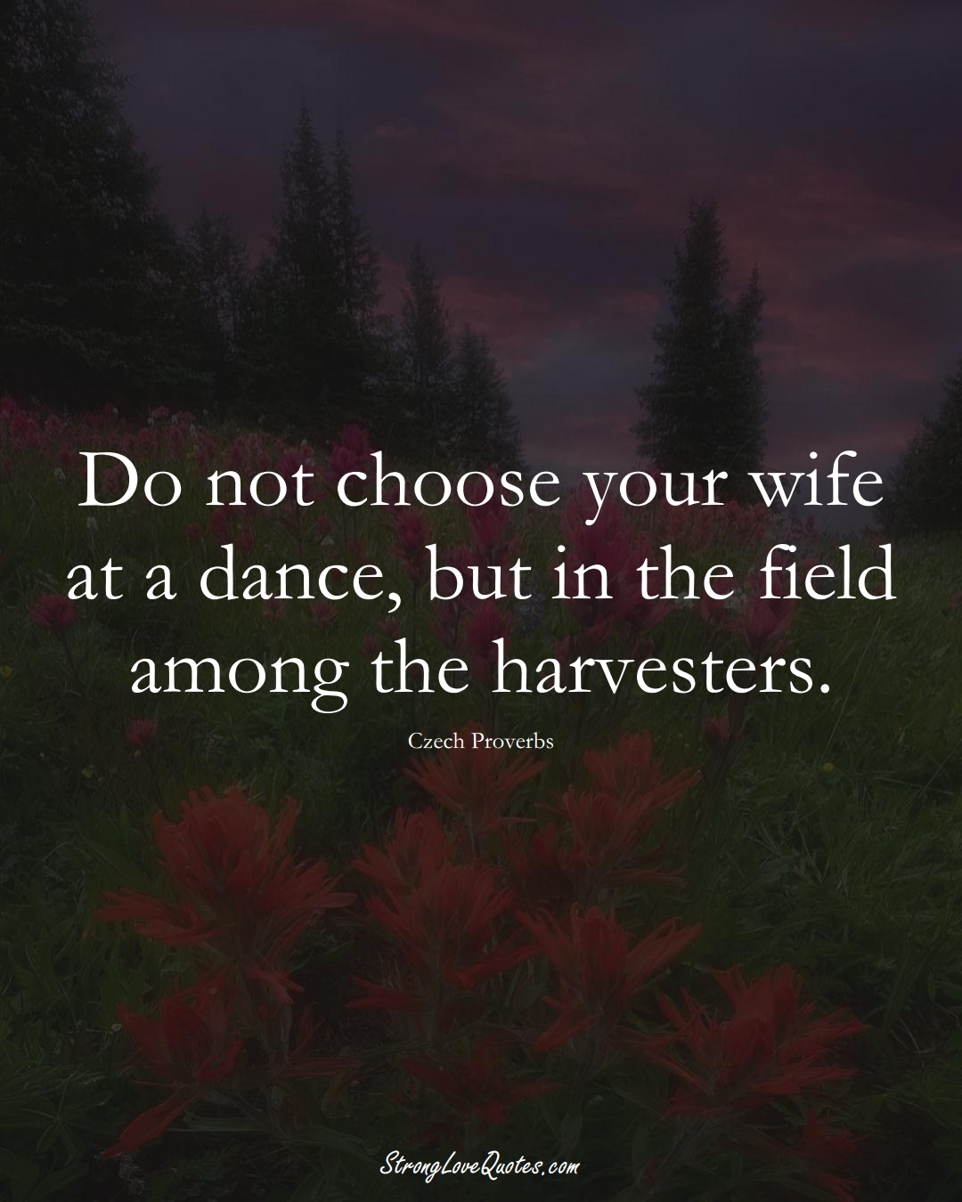 Do not choose your wife at a dance, but in the field among the harvesters. (Czech Sayings);  #EuropeanSayings