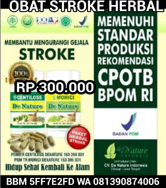 obat stroke termanjur