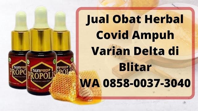 Jual Obat Herbal Covid Ampuh Varian Delta di Blitar WA 0858-0037-3040