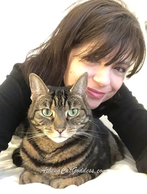 tabby cat with her human mum