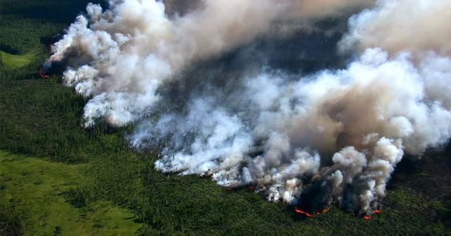 Amazonas: el fuego sigue fuera de control y ya arrasó 2 millones de hectáreas en Bolivia