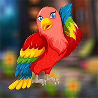 AvmGames Colourful Bird E…