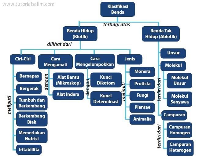 Klasifikasi Makluk Hidup