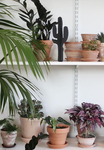 blomsterbaren, varberg, blomsterbutik, brukstorget, ljusstake, ljusstakar, inredning, webbutik, webshop, nätbutik inredning, kaktus, kaktusar,
