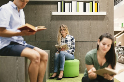 Lectura puente importante sociedad