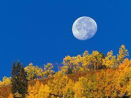 La posición de la Luna y el Sol no es opuesta