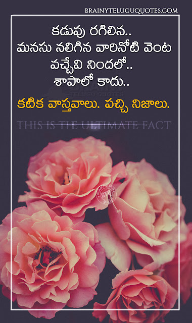 telugu best words on life, true realistic life quotes, whats app sharing true motivational quotes