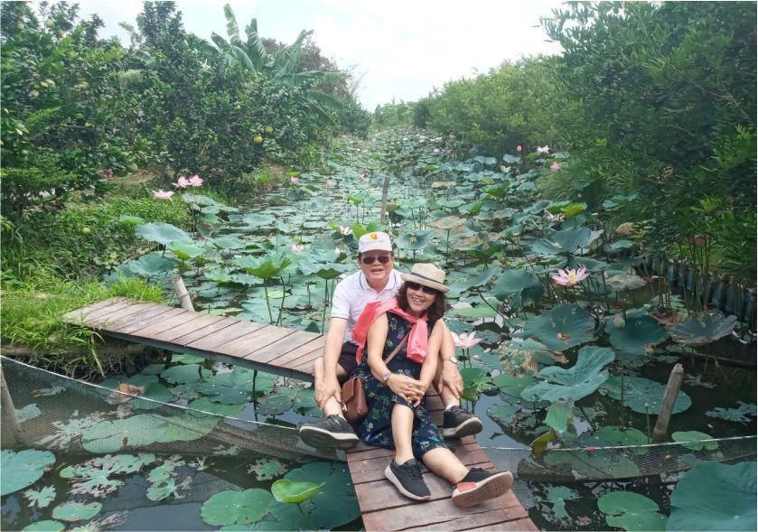 Hồ sen hồng cồn Sơn