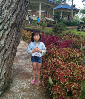 Lokasi Taman Wisata Iman Dairi - Desa Sitinjo