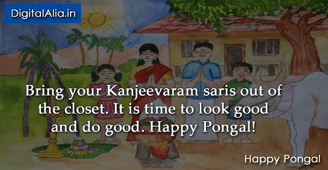 pongal quotes, pongal wisehs quotes, pongal quotes images, pongal quotes in english, pongal quotes in tamil, pongal quotes in telugu, pongal greeting cards, thai pongal quotes, muttu pongal quotes