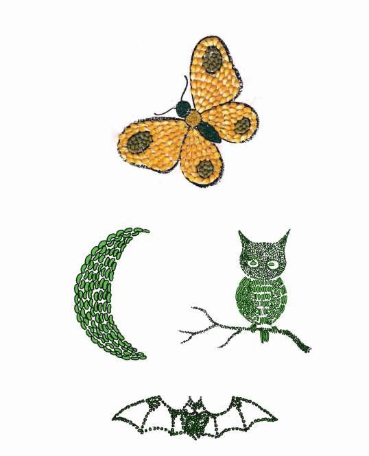 Gambar Kolase Hewan Dari Biji Bijian : gambar, kolase, hewan, bijian, Gambar, Kolase, Kelelawar, Bijian, Terbaru, Kumpulan