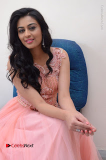 Actress Neha Hinge Stills in Pink Long Dress at Srivalli Teaser Launch  0124.JPG