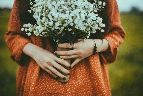 Flores Em Vida Colecionando Primaveras