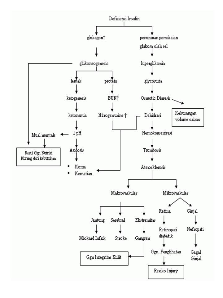 patofisiologi dan penyimpangan kdm diabetes melitus