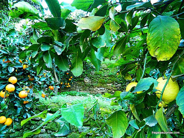 Jardim da Kolymbethra