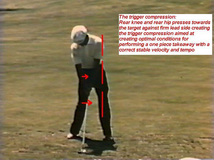 Biokinetic Golf Swing Theory: The Sagittal Plane Compression