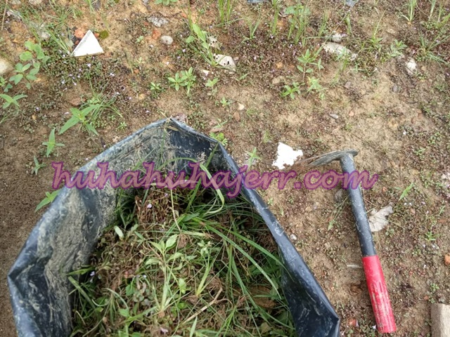 Buat Tanah Kompos - Sebelum Terjadinya Kompos