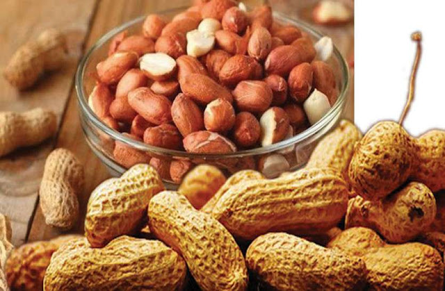 If you want to avoid these diseases, then definitely include peanuts in your diet Funny Jokes