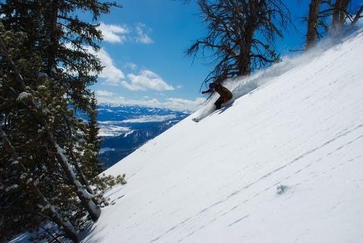 スキーで新雪を滑る