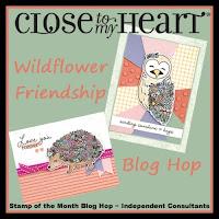 Wildflower Friendship - October 2021 SOTM