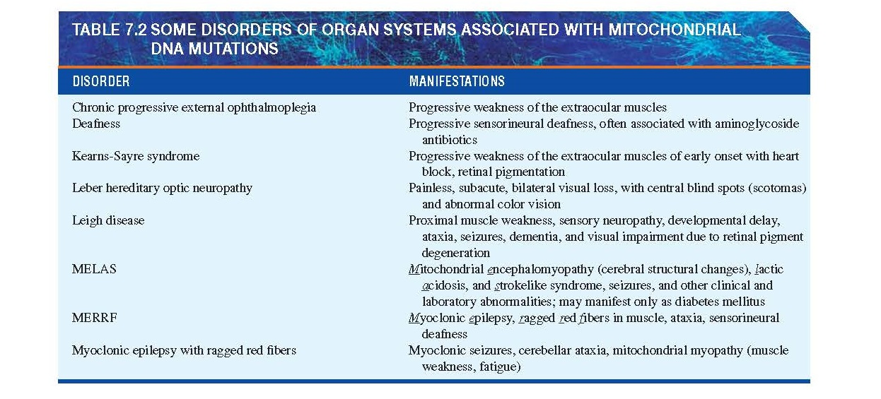 Mitochondrial Gene Disorders