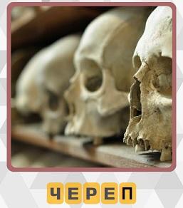 600 слов на полке лежат несколько черепов 14 уровень