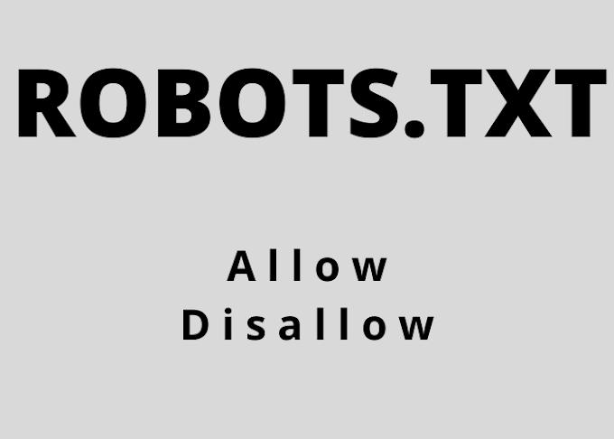 Robots Txt File - Google Ranking Factor Five
