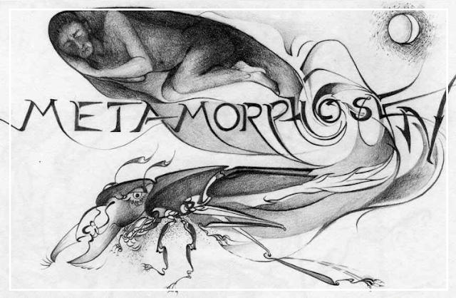 A Metamorfose e Sofrimento Mental