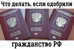 Вестник мигранта и путешественника