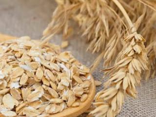 فوائد نبات الشوفان للقلب وخفض الوزن والسكري وعناصره الغذائية