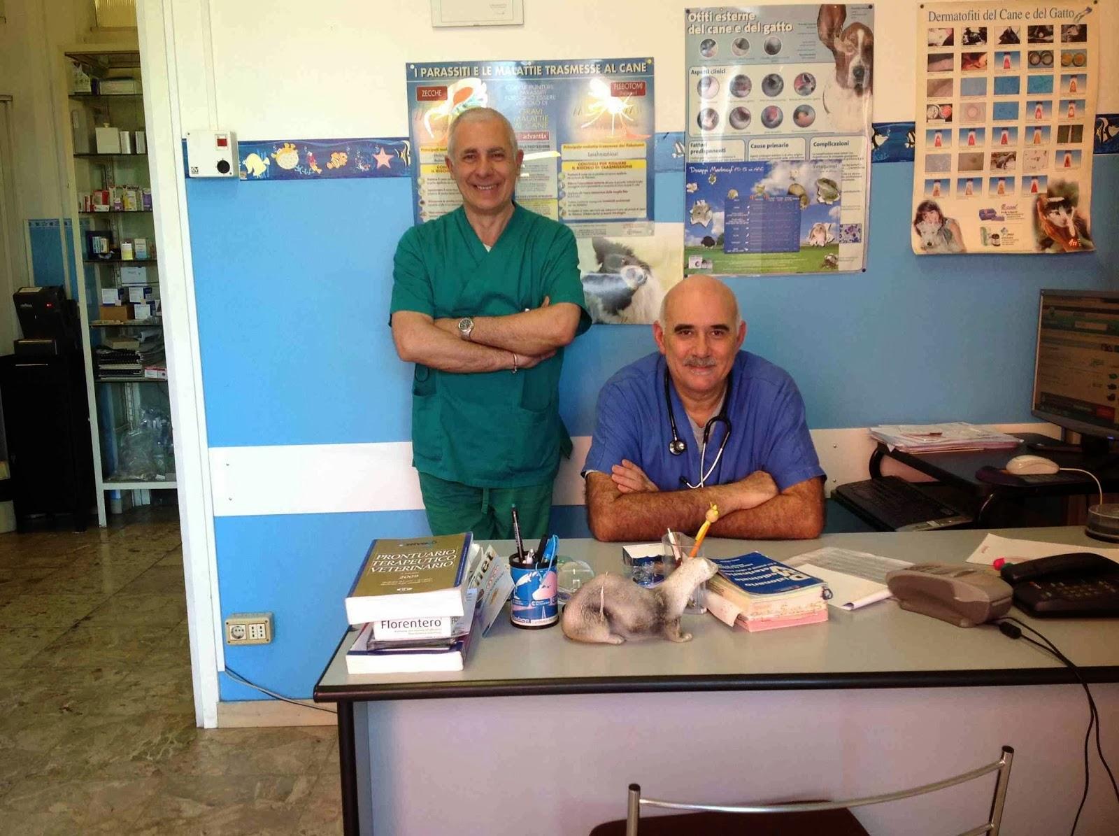 Amici A 4 Zampe E Non Solo Il Veterinario Consiglia