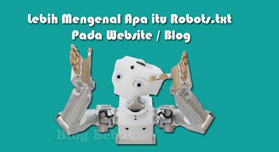 Lebih Mengenal Apa itu Robots.txt Pada Website