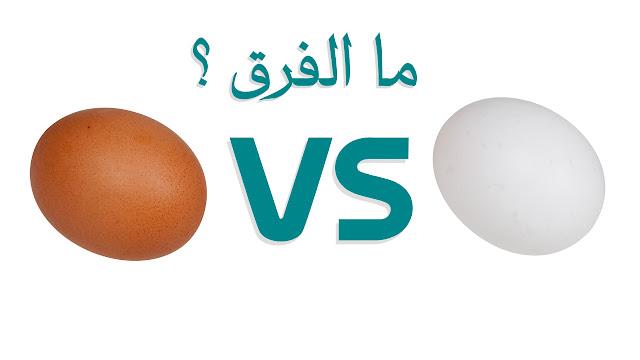 هل هناك فارق بين البيض الابيض والبيض البنى ؟