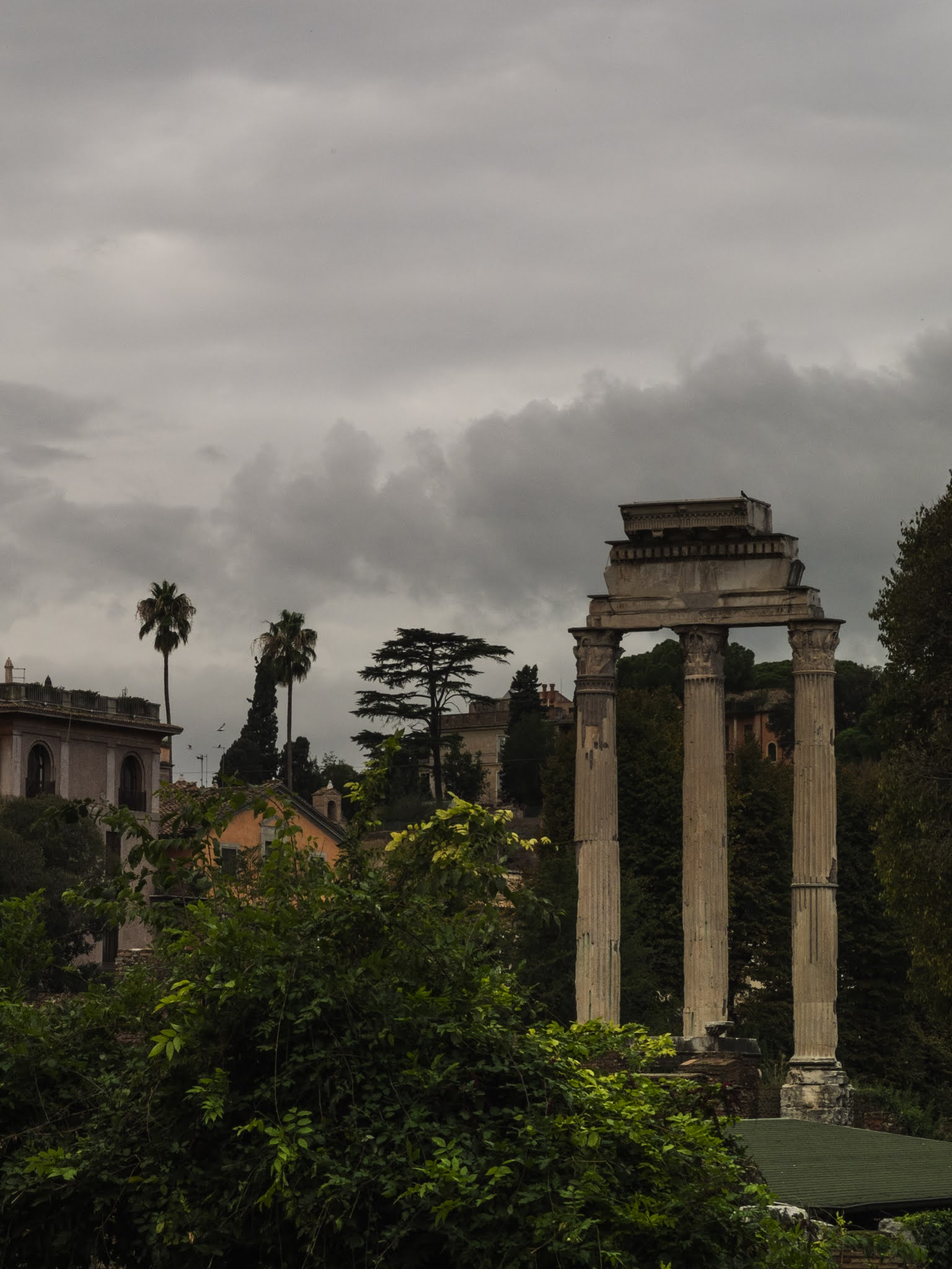 View of the Temple of Castor and Pollux surrounded by various trees.