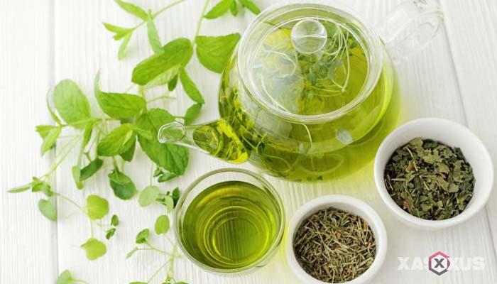 Minuman untuk diet alami dan cepat - Teh hijau