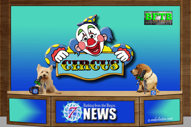 BFTB NETWoof News reports on Barnum & Bailey circus closing