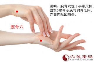 腕骨穴位 | 腕骨穴痛位置 - 穴道按摩經絡圖解 | Source:xueweitu.iiyun.com