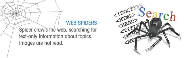 seo spider crawler