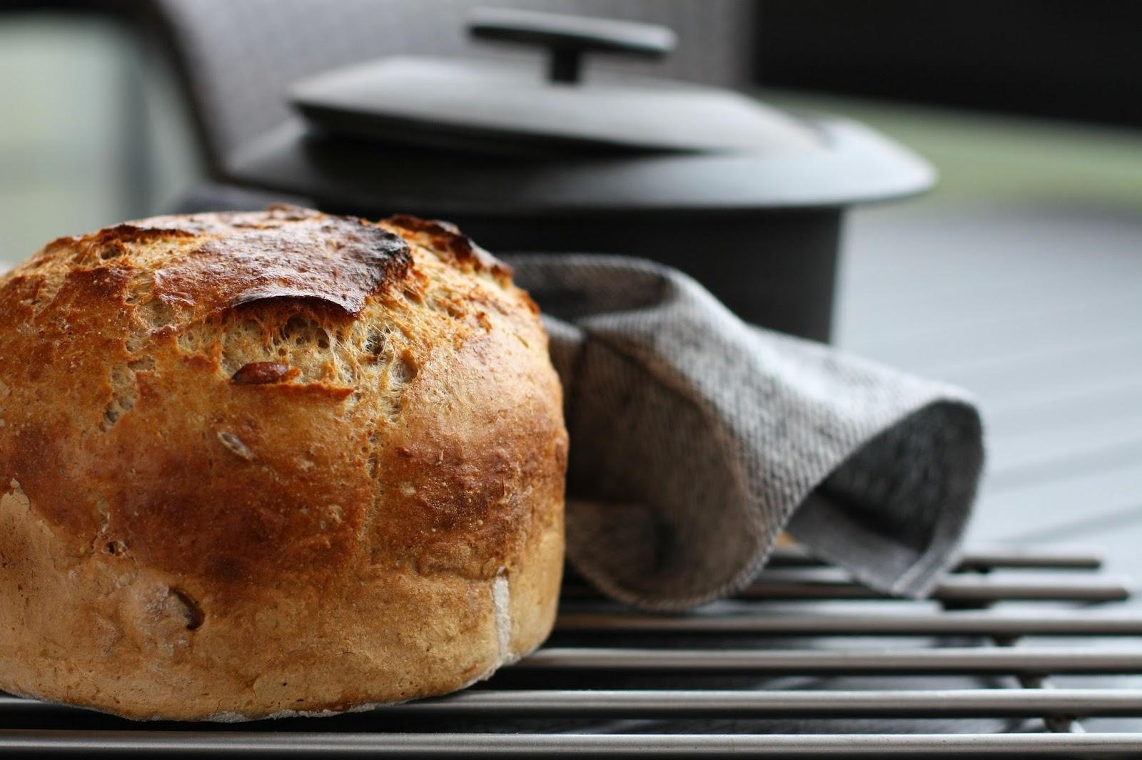 pataleipä vehnäjuuri juuripataleipä juurileivonta leipäjuuri mallaspulla