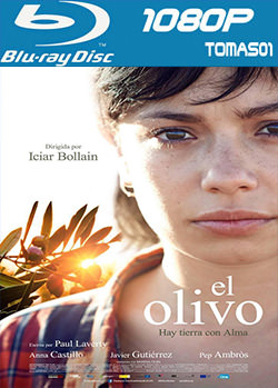 El olivo (2016) BDRip m1080p
