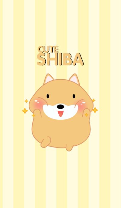 Cute Fat Shiba Inu Theme