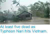 http://sciencythoughts.blogspot.co.uk/2013/10/at-least-five-dead-as-typhoon-nari-hits.html