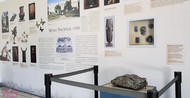 """Exposição """"Antártica - Quando nem tudo era gelo"""" Museu Nacional"""